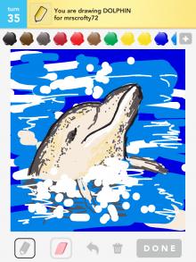 Drawsomething Dolphin